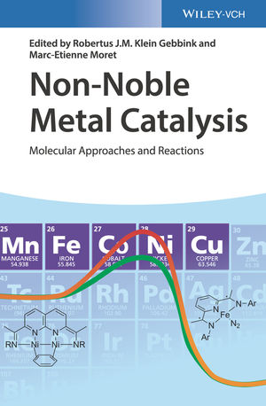 non-noble-metal-catalysis